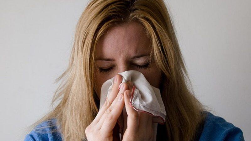 Alimentos para combatir la gripe